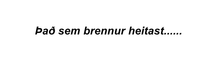 ÞAÐ SEM BRENNUR HEITAST - Hausmynd